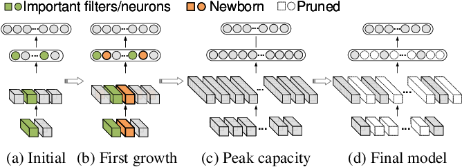 Figure 1 for CGaP: Continuous Growth and Pruning for Efficient Deep Learning