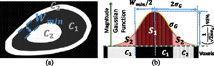 Fig. 2. Displaying (a) example of Wmin , and (b) example of regions inside an organ and their intensity values.