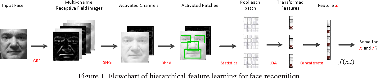Figure 1 for Large-scale Supervised Hierarchical Feature Learning for Face Recognition