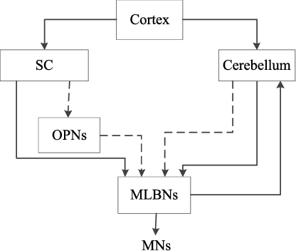 Figure 3 for Motion Control on Bionic Eyes: A Comprehensive Review