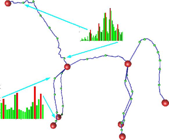 Example Based Skeletonization Using Harmonic One Forms