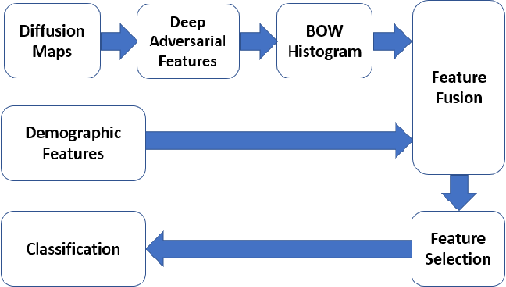 Figure 1 for MTBI Identification From Diffusion MR Images Using Bag of Adversarial Visual Features