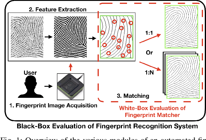 Figure 1 for White-Box Evaluation of Fingerprint Recognition Systems