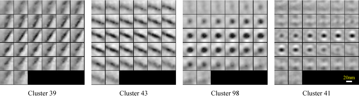 Figure 4 for A convolutional autoencoder approach for mining features in cellular electron cryo-tomograms and weakly supervised coarse segmentation