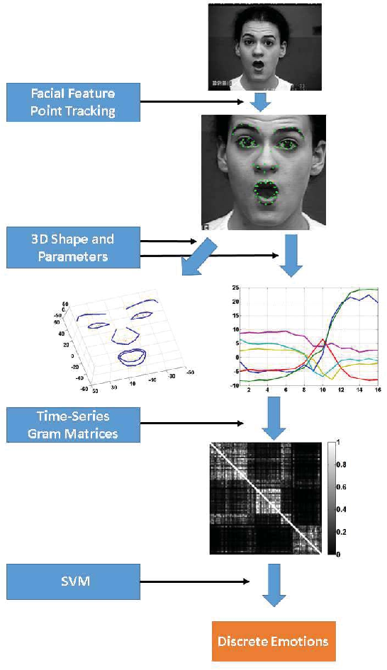 Figure 1 for Emotional Expression Classification using Time-Series Kernels