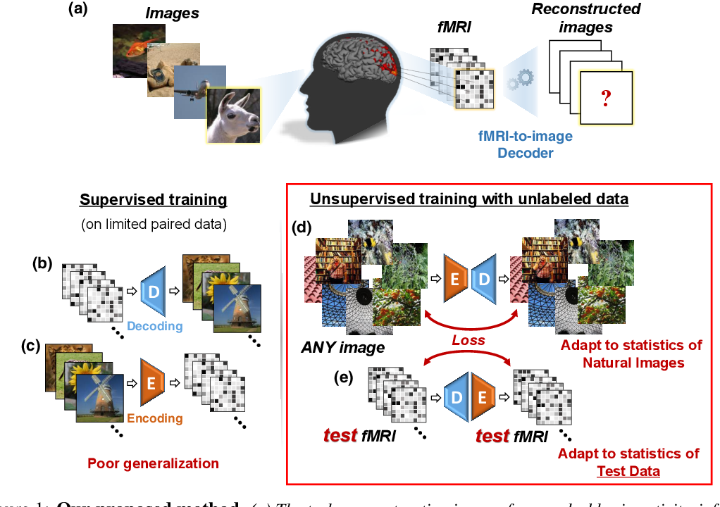 Figure 1 for From voxels to pixels and back: Self-supervision in natural-image reconstruction from fMRI