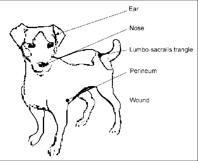 Figure 2 From The Occurrence And Comparative Phenotypic