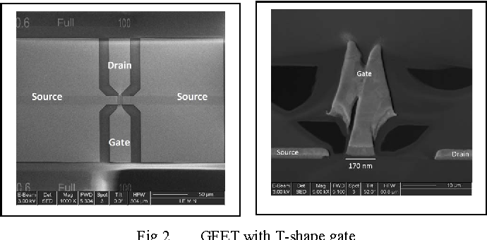Fig 2. GFET with T-shape gate.