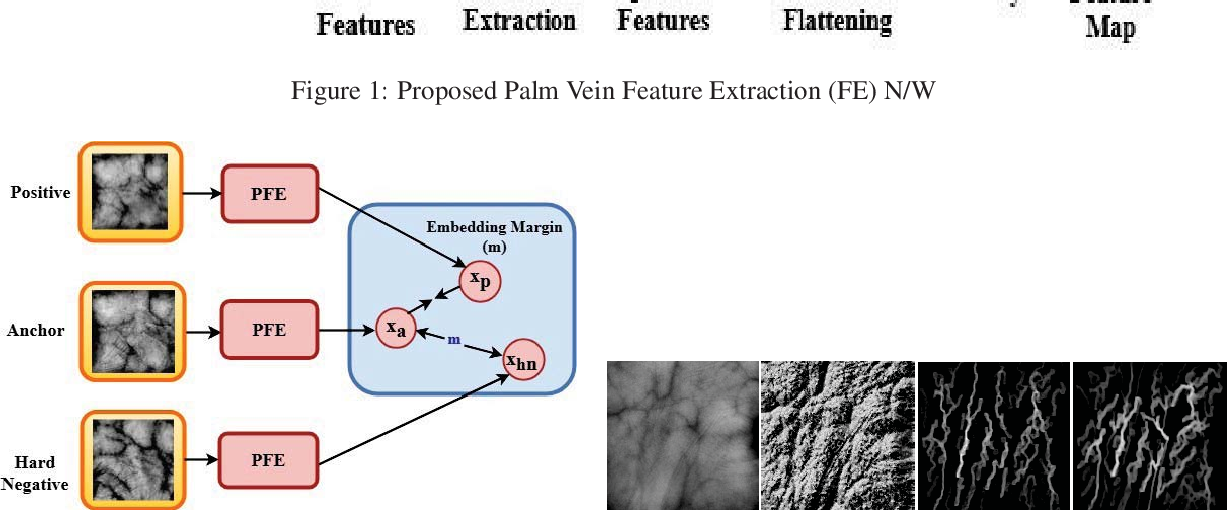 Figure 3 for PVSNet: Palm Vein Authentication Siamese Network Trained using Triplet Loss and Adaptive Hard Mining by Learning Enforced Domain Specific Features