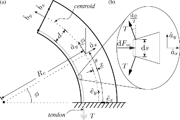 Figure 3 From Mechanics Modeling Of Tendon Driven Continuum