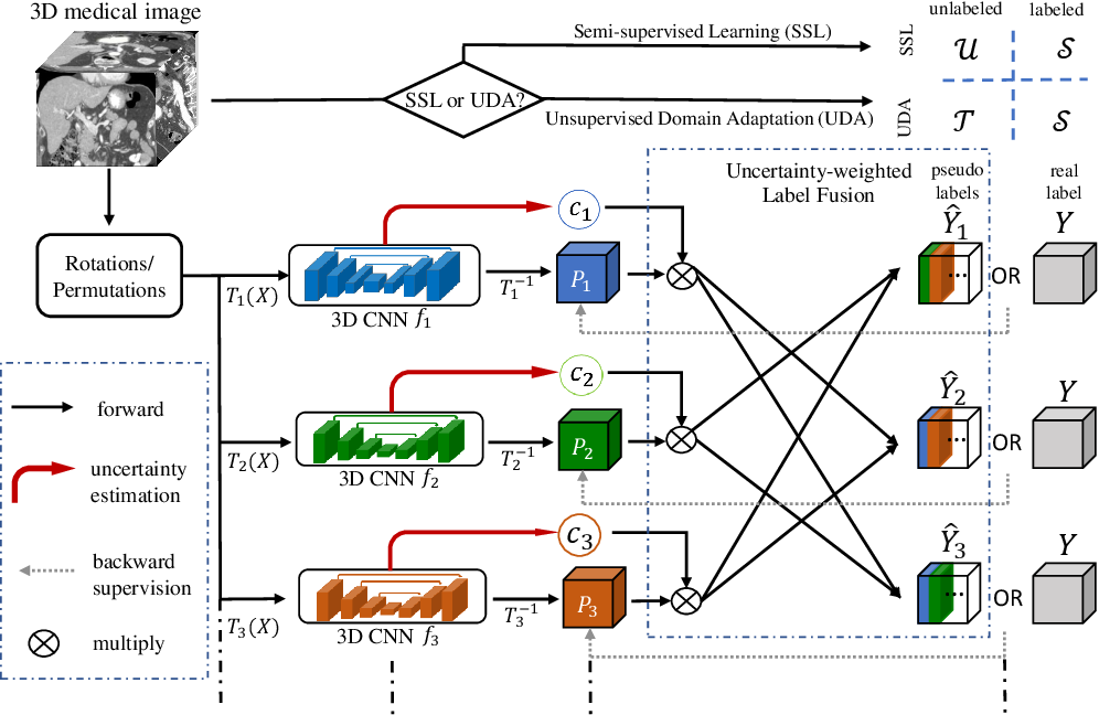 Figure 3 for Uncertainty-aware multi-view co-training for semi-supervised medical image segmentation and domain adaptation