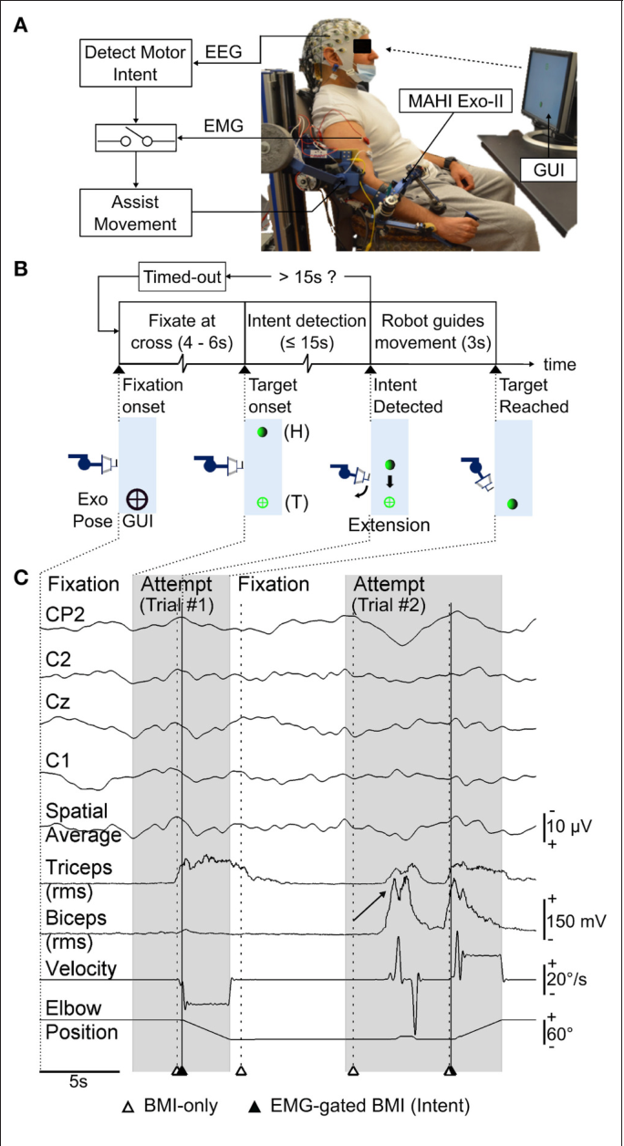 Figure 1 From Design And Optimization Of An Eeg Based Brain Machine 5 Schematic Diagram The Electromyography Emg Detecting A Asynchronous Bmi Motor