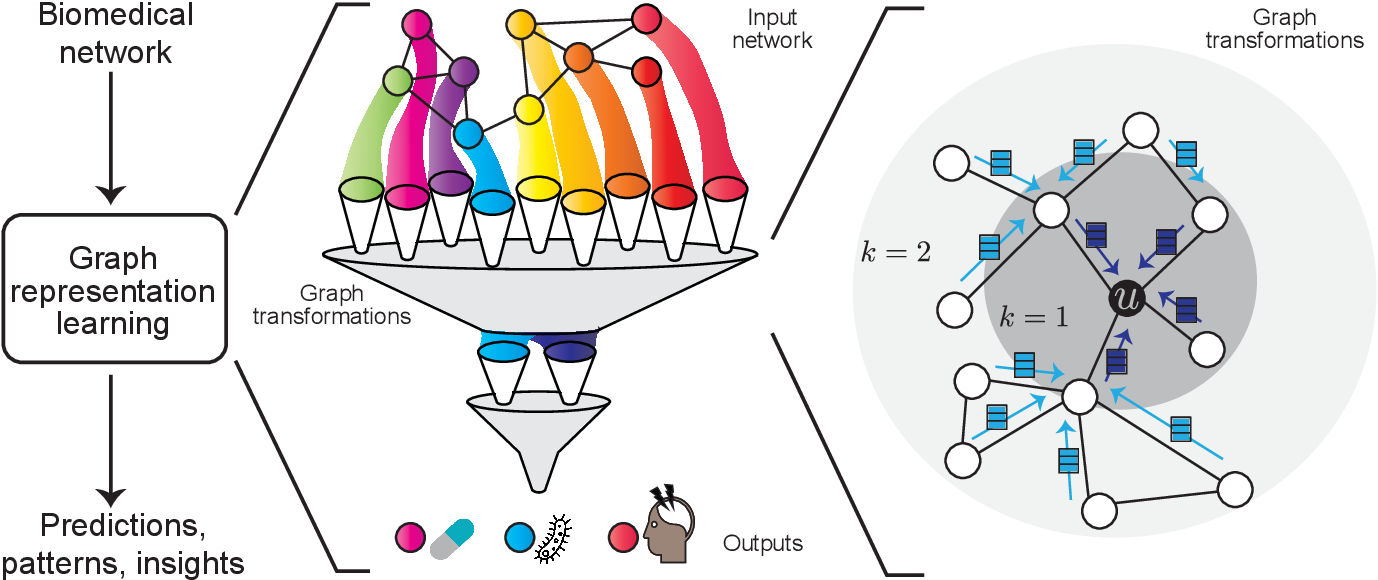 Figure 1 for Representation Learning for Networks in Biology and Medicine: Advancements, Challenges, and Opportunities