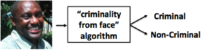 Figure 1 for The Criminality From Face Illusion