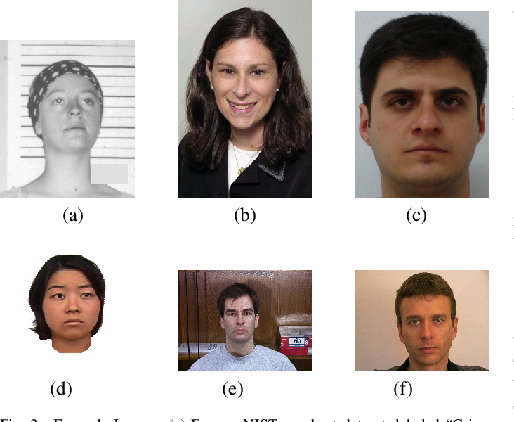 Figure 3 for The Criminality From Face Illusion