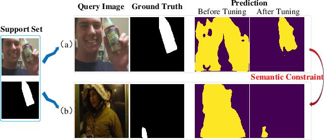 Figure 1 for Self-Supervised Tuning for Few-Shot Segmentation
