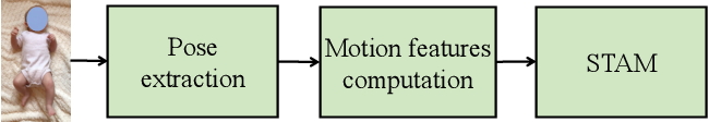 Figure 4 for A Spatio-temporal Attention-based Model for Infant Movement Assessment from Videos