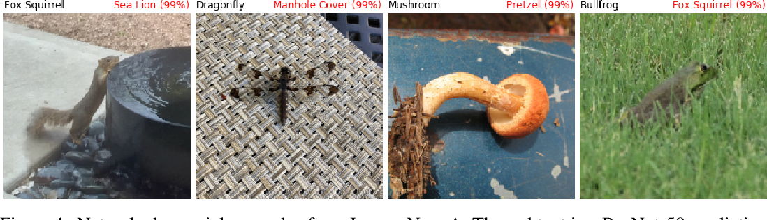 Figure 1 for Natural Adversarial Examples