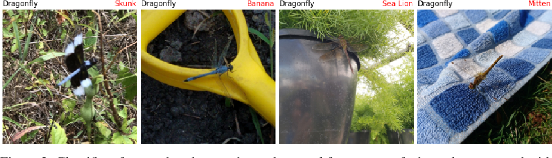Figure 3 for Natural Adversarial Examples