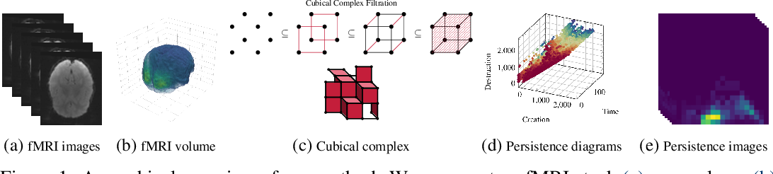 Figure 1 for Uncovering the Topology of Time-Varying fMRI Data using Cubical Persistence