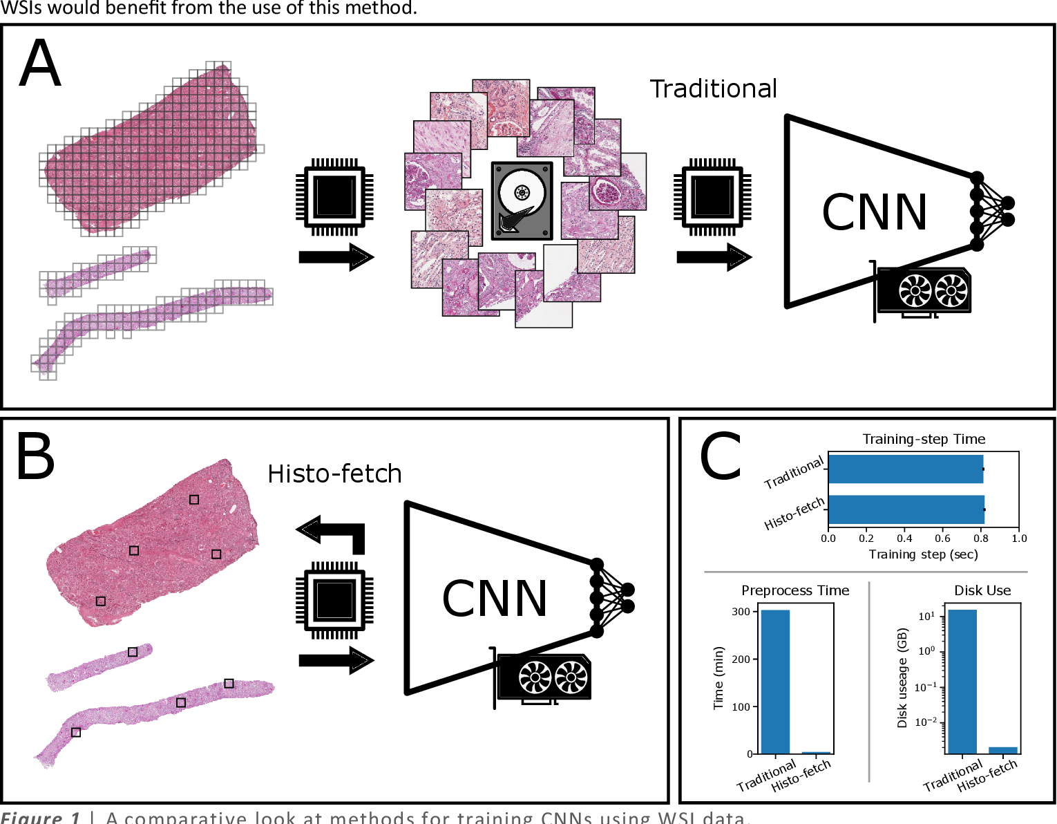 Figure 1 for Histo-fetch -- On-the-fly processing of gigapixel whole slide images simplifies and speeds neural network training