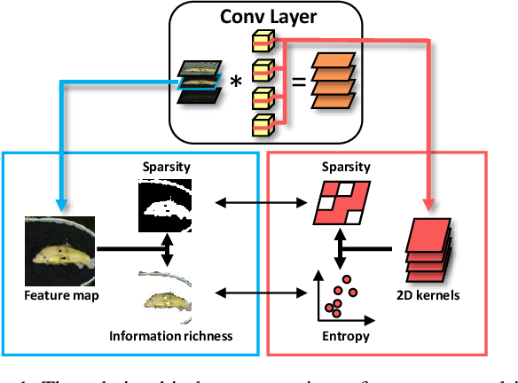 Figure 1 for Exploiting Kernel Sparsity and Entropy for Interpretable CNN Compression