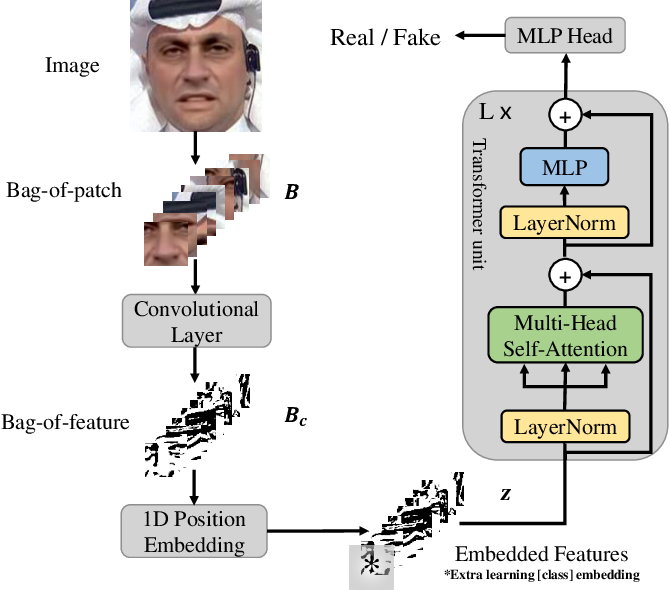 Figure 1 for Towards Generalizable and Robust Face Manipulation Detection via Bag-of-local-feature