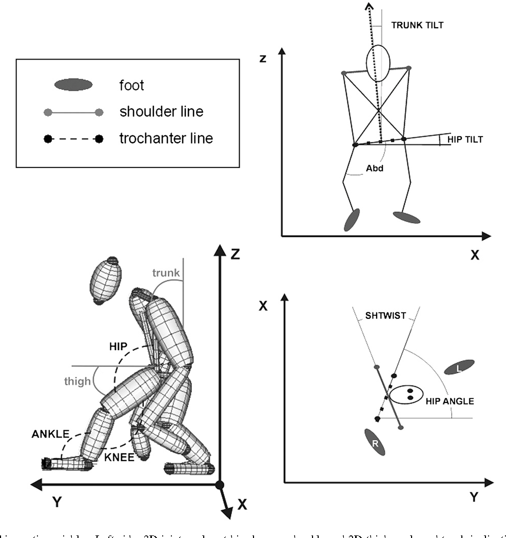Figure 3 from Speed modulation in hylobatid bipedalism: a kinematic ...