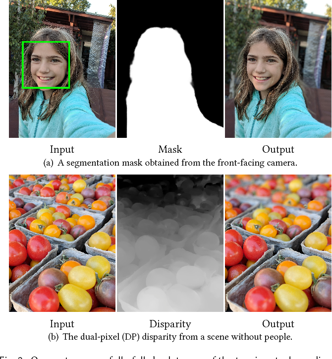 Figure 2 for Synthetic Depth-of-Field with a Single-Camera Mobile Phone