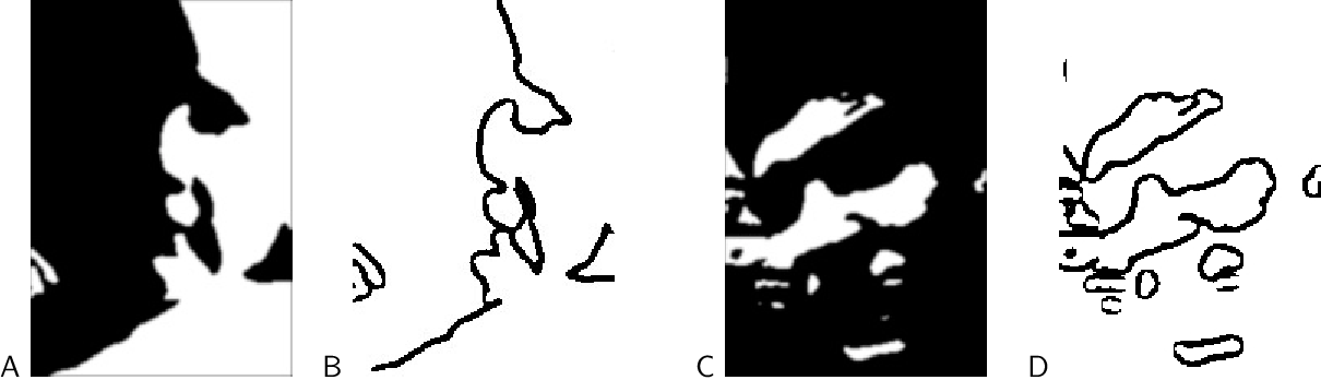 Figure 2 for The Role of Edges in Line Drawing Perception