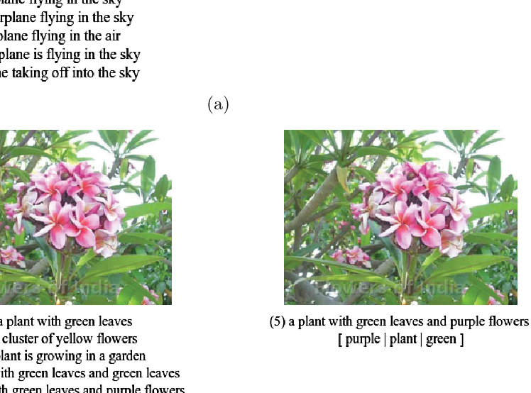 Figure 1 for Improving Image Captioning by Concept-based Sentence Reranking
