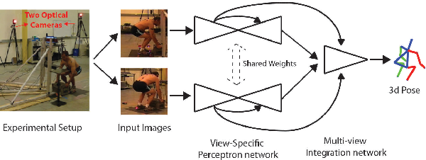 Figure 1 for Toward Marker-free 3D Pose Estimation in Lifting: A Deep Multi-view Solution