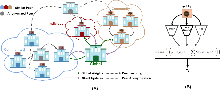 Figure 1 for Peer Learning for Skin Lesion Classification