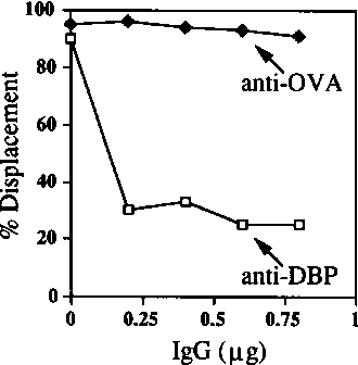 Figure 4. Inhibition of DBP catalysed DNA unwinding by a monoclonal antibody (B6-10) directed against the C-terminal region of DBP. The indicated amount of IgG, purified by elution from protein-G Sepharose, from monoclonal antibodies directed against DBP (anti-DBP) or ovalbumin (anti-OVA) was added to DNA unwinding reactions and the fraction of 39 mer DNA displaced from its complementary sequence in M13 calculated as described in the legend to figure 3.