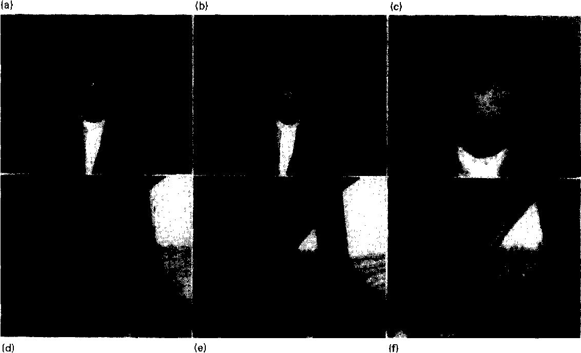Fig 7. Reconstructed sequences at constant rate: Claire 16 kbit/s, Carphone 32 kbit/s. (a) Frame # 1 Claire, (b) Frame #96 Claire, (c) Zoom on face area frame #96 Claire, (d) Frame # 1 Carphone, (e) Frame #96 Carphone, (f) Zoom on face area frame #96 Carphone.