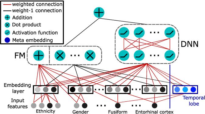 Figure 1 for Alzheimer's Disease Diagnosis via Deep Factorization Machine Models