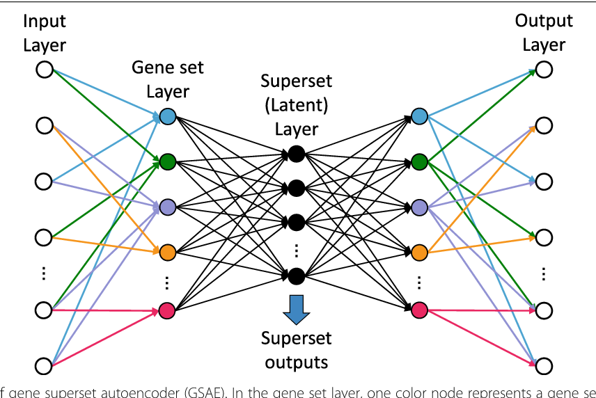 Figure 1 for GSAE: an autoencoder with embedded gene-set nodes for genomics functional characterization