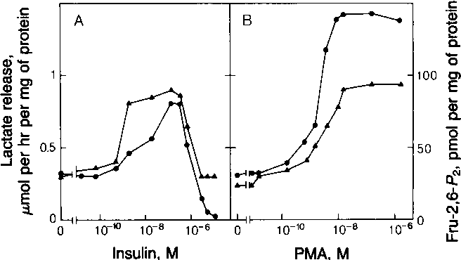 FIG. 2. Doe-repons cures frtheeffetofinsuinadM0 - 100