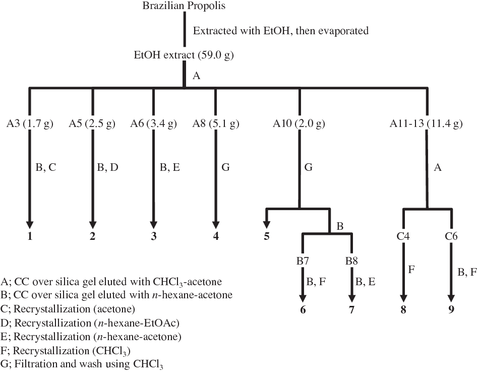 Figure 2. Flowchart for the isolation of chemical constituents from Brazilian green propolis.