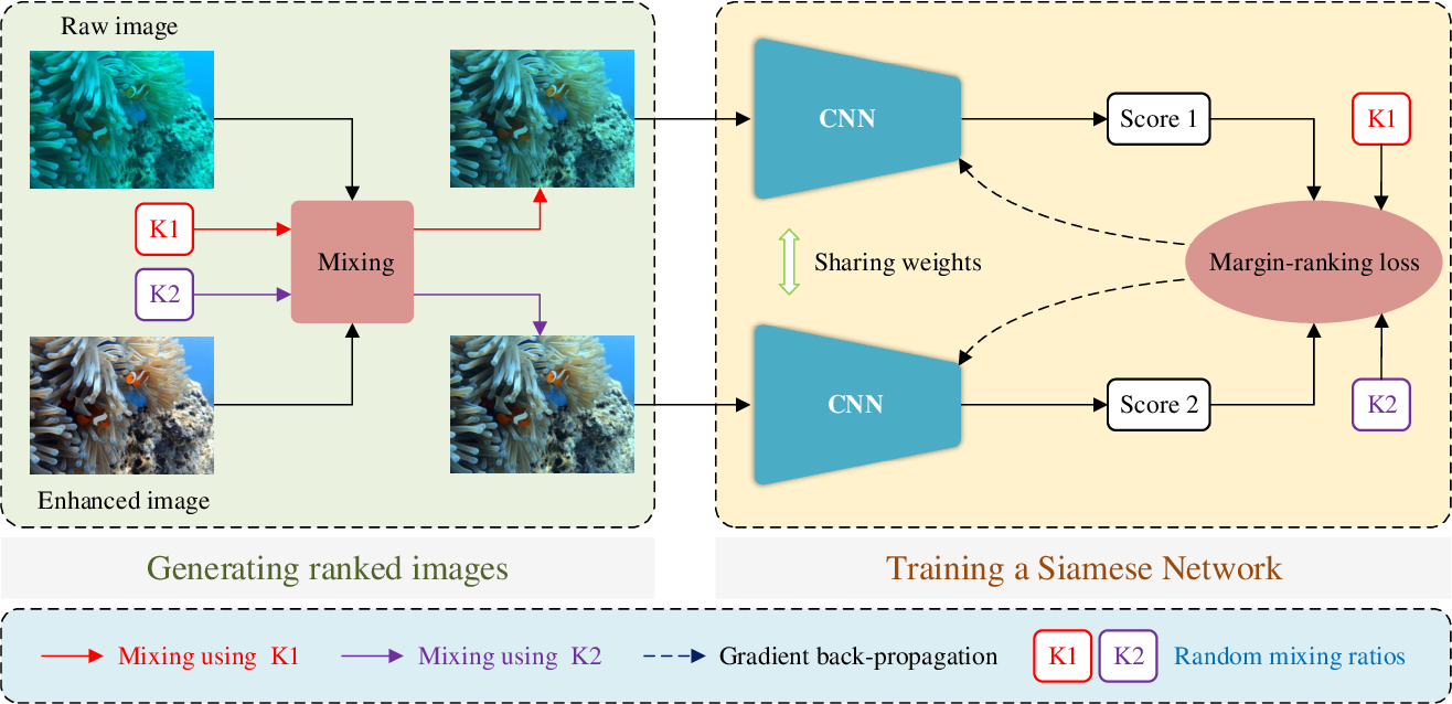 Figure 2 for Twice Mixing: A Rank Learning based Quality Assessment Approach for Underwater Image Enhancement
