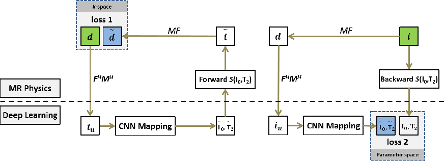 Figure 1 for MANTIS: Model-Augmented Neural neTwork with Incoherent k-space Sampling for efficient MR T2 mapping
