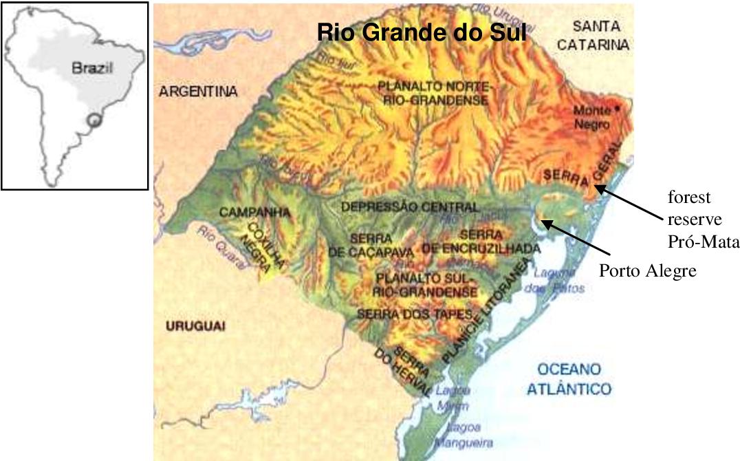 PDF] Soils in the southern Brazilian highlands: genesis ...