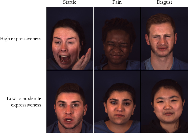 Figure 1 for Context-Dependent Models for Predicting and Characterizing Facial Expressiveness