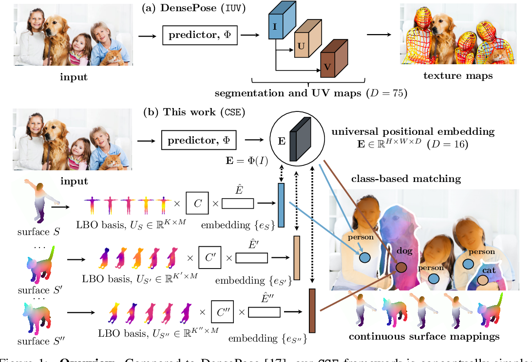 Figure 1 for Continuous Surface Embeddings