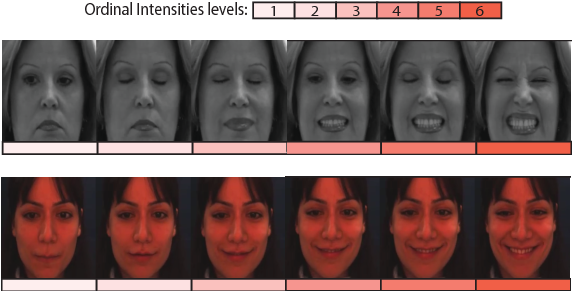 Figure 1 for Multi-Instance Dynamic Ordinal Random Fields for Weakly-supervised Facial Behavior Analysis