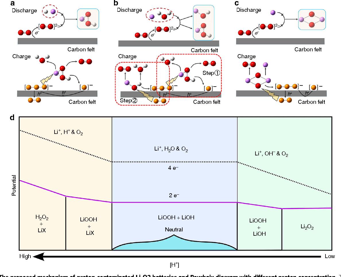 Figure 5 from proton enhanced dynamic battery chemistry for aprotic figure 5 the proposed mechanism of proton contaminated li o2 batteries and pourbaix ccuart Image collections