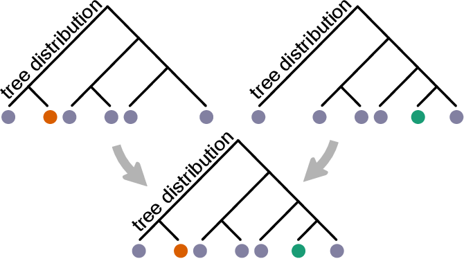 Figure 1 for Variational Bayesian Supertrees