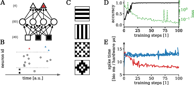 Figure 2 for Versatile emulation of spiking neural networks on an accelerated neuromorphic substrate