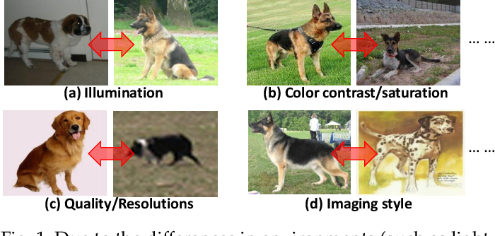 Figure 1 for Style Normalization and Restitution for DomainGeneralization and Adaptation