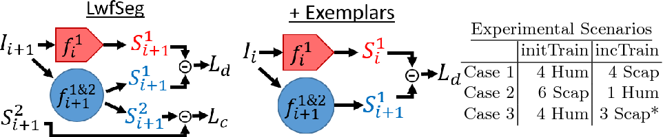 Figure 3 for Learn the new, keep the old: Extending pretrained models with new anatomy and images